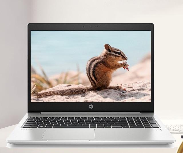 HP ProBook 450 G6 (5YM80PA) (Bạc) i5